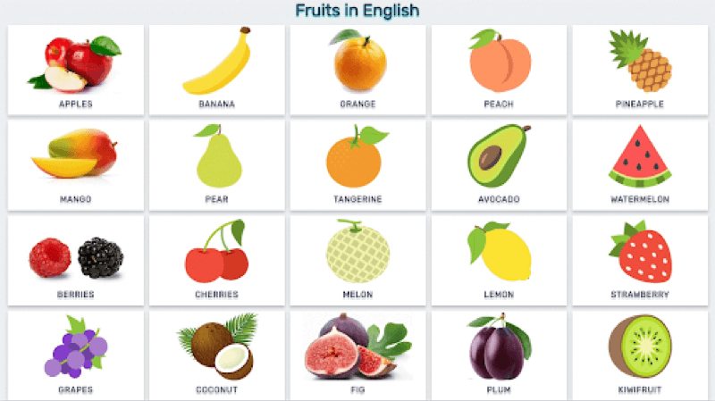Học tiếng Anh lớp 3 - trái cây